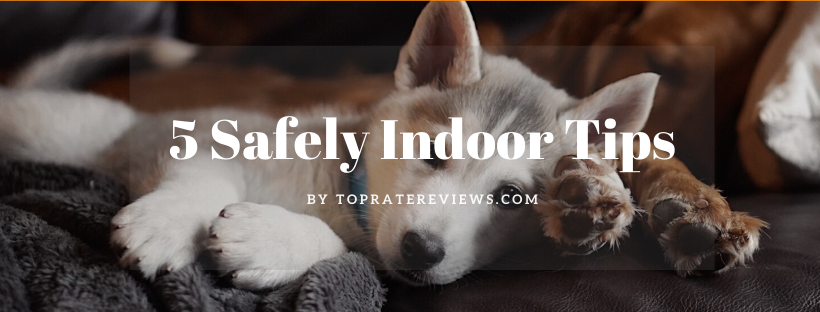 5 Safely Indoor Tips