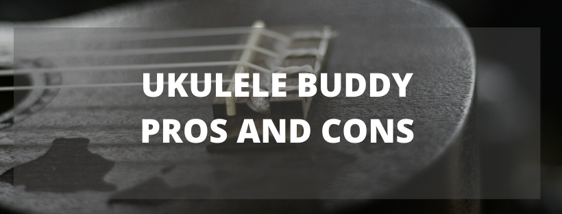 Ukulele Buddy Pros and Cons
