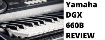 yamaha dgx660b