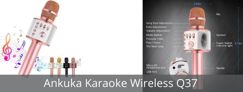 Ankuka Karaoke Wireless Q37 Microphone