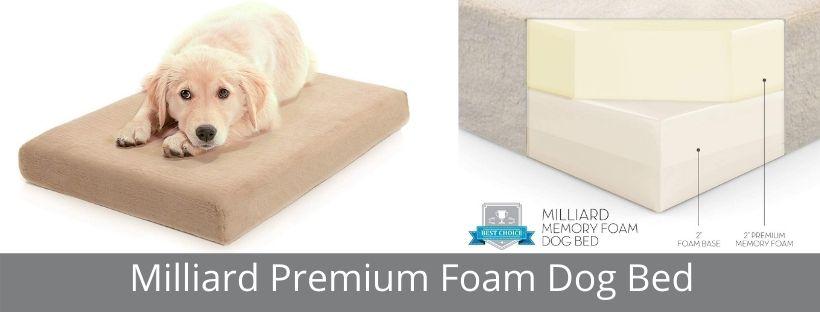 Milliard Premium Foam Dog Bed
