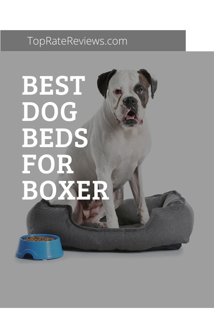 Best Dog Beds For Boxer