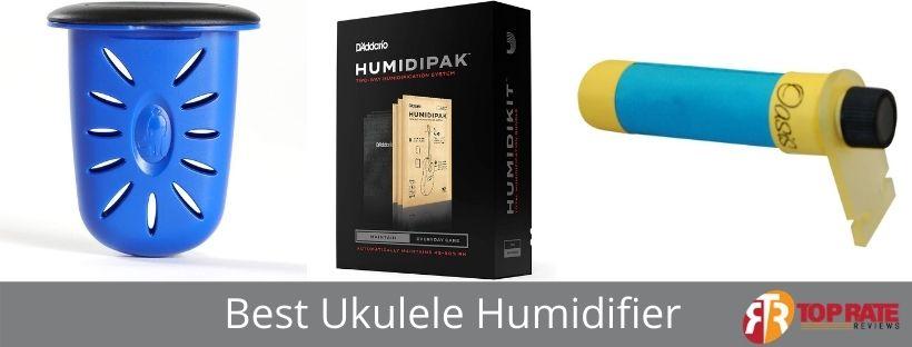 Best Ukulele Humidifier