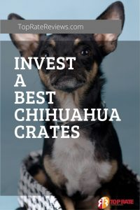 Invest a Best Chihuahua Crates