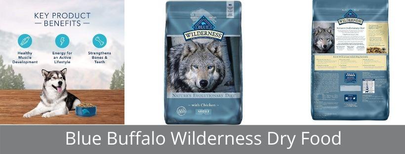 Blue Buffalo Wilderness Dry Food