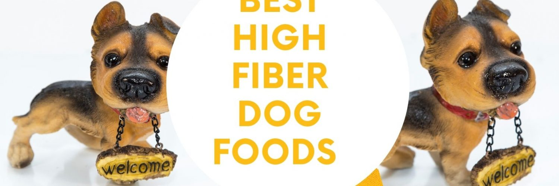 Best High Fiber Dog Foods