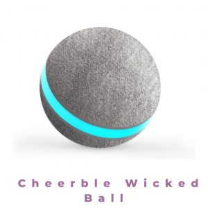Cheerble Wicked Ball