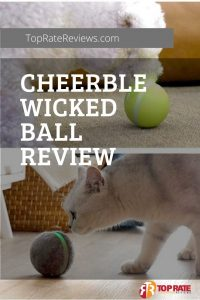 Cheerble Wicked Ball Review