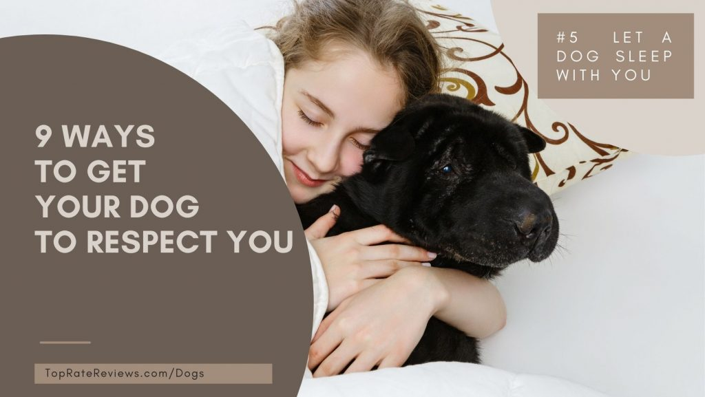 Ways To Get Your Dog To Respect You- Sleep With You