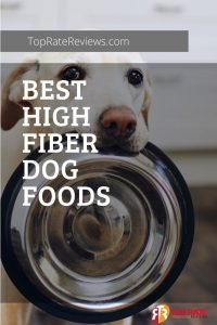 fiber foods for dogs