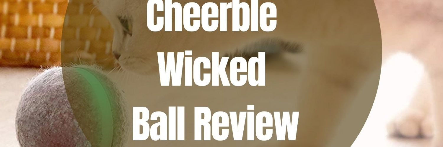 wicked ball reviews